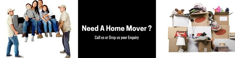 Need-a-Home-Mover-_9Reno